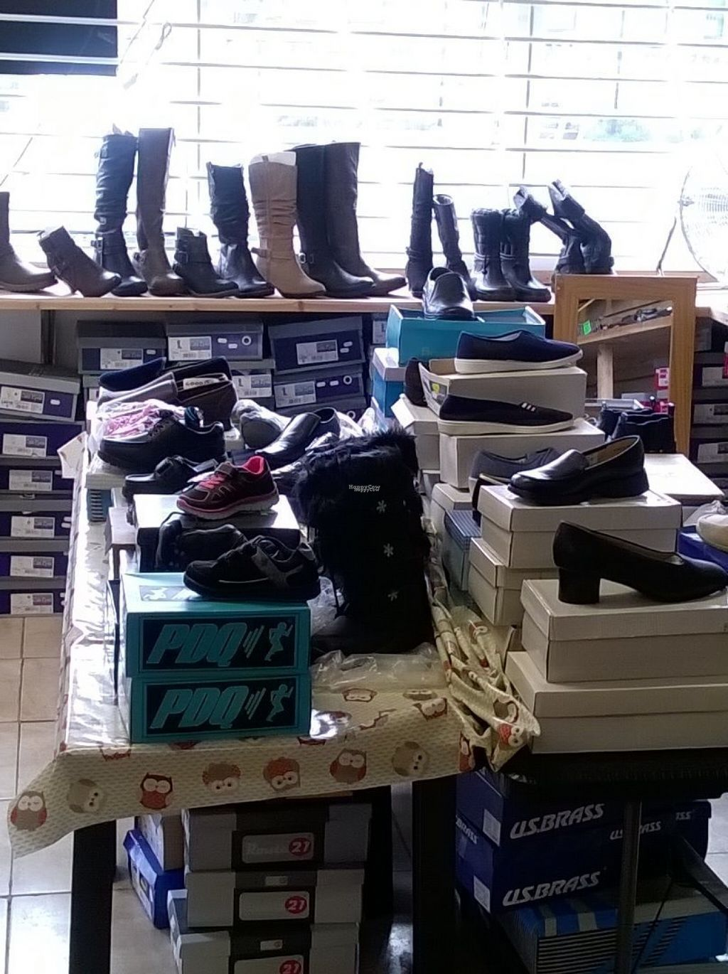 """Photo of Alternative Stores  by <a href=""""/members/profile/deadpledge"""">deadpledge</a> <br/>Vegan shoes <br/> August 15, 2016  - <a href='/contact/abuse/image/15169/168895'>Report</a>"""