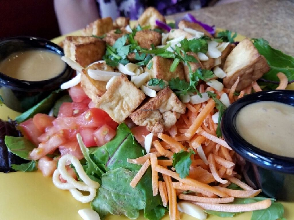 """Photo of Cafe Yumm  by <a href=""""/members/profile/EverydayTastiness"""">EverydayTastiness</a> <br/>secret Asian man salad <br/> June 10, 2016  - <a href='/contact/abuse/image/15418/153324'>Report</a>"""