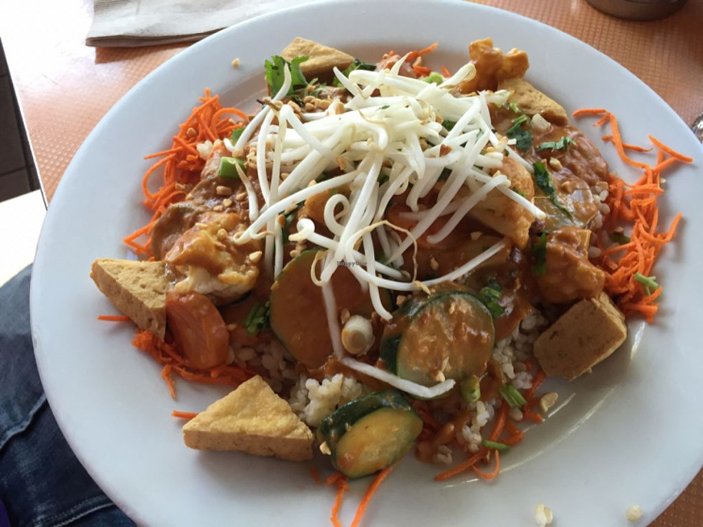"""Photo of Saturn Cafe  by <a href=""""/members/profile/Arvid"""">Arvid</a> <br/>Peanut sauce tofu, vegetables, rice <br/> July 25, 2016  - <a href='/contact/abuse/image/1550/162192'>Report</a>"""