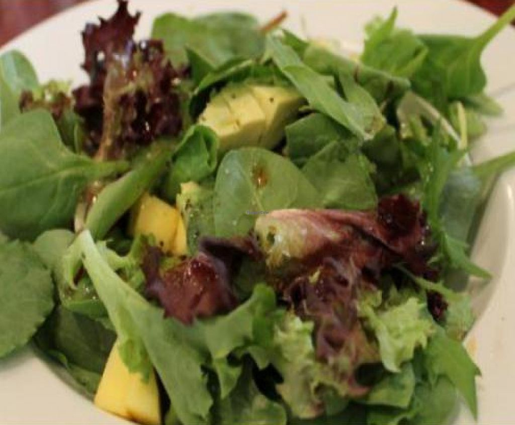 "Photo of Mi Lah Vegetarian  by <a href=""/members/profile/quarrygirl"">quarrygirl</a> <br/>Mango, avocado and mix green salad with spicy Caribbean lime dressing by JL goes vegan <br/> December 26, 2011  - <a href='/contact/abuse/image/15644/189928'>Report</a>"