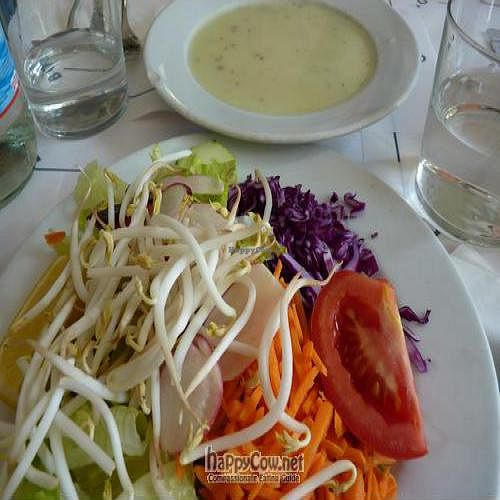 """Photo of Arco Iris  by <a href=""""/members/profile/Nihacc"""">Nihacc</a> <br/>Salad & Veggie soup <br/> January 18, 2011  - <a href='/contact/abuse/image/15730/7101'>Report</a>"""
