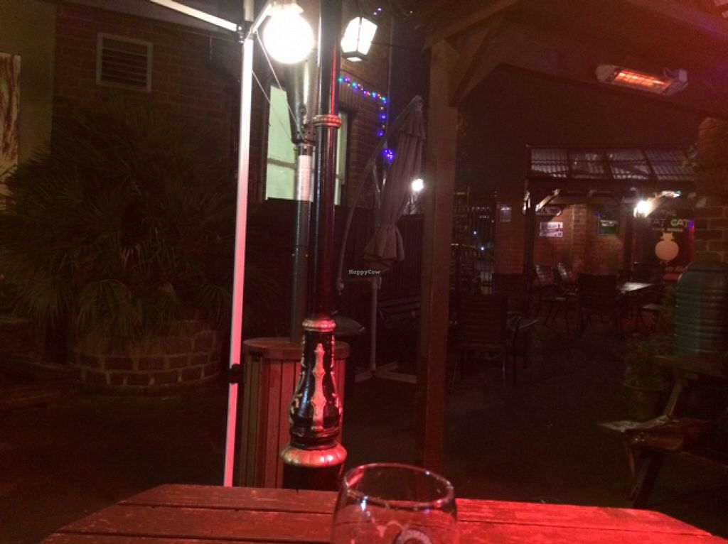 "Photo of The Fat Cat  by <a href=""/members/profile/colgwilliams"">colgwilliams</a> <br/>cosy beer garden <br/> November 12, 2015  - <a href='/contact/abuse/image/15776/124717'>Report</a>"