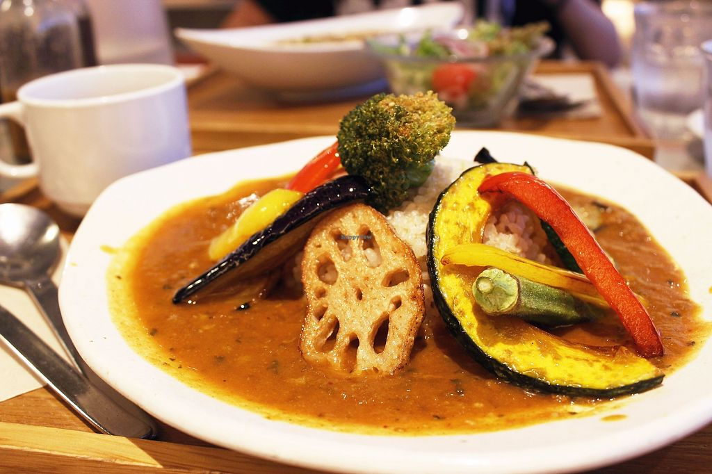 """Photo of Mumokuteki Cafe and Foods  by <a href=""""/members/profile/YukiLim"""">YukiLim</a> <br/>Vegan curry <br/> July 16, 2017  - <a href='/contact/abuse/image/15812/280909'>Report</a>"""