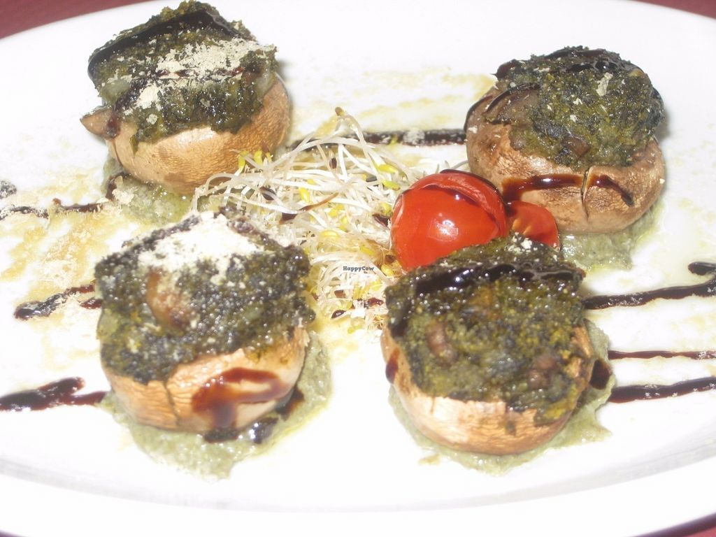 "Photo of B12  by <a href=""/members/profile/jennyc32"">jennyc32</a> <br/>Stuffed mushroom starter <br/> July 17, 2016  - <a href='/contact/abuse/image/15834/160439'>Report</a>"