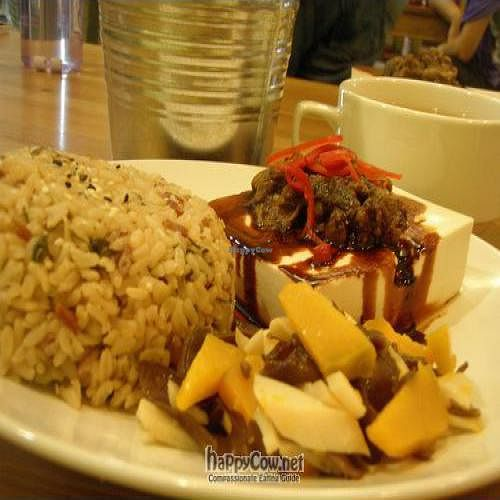 "Photo of Create Healthy Lifestyle  by <a href=""/members/profile/Peace%20..."">Peace ...</a> <br/>Tofu and Mushroom Brown Rice Set with Soup # $6.0 <br/> October 9, 2010  - <a href='/contact/abuse/image/15989/6046'>Report</a>"