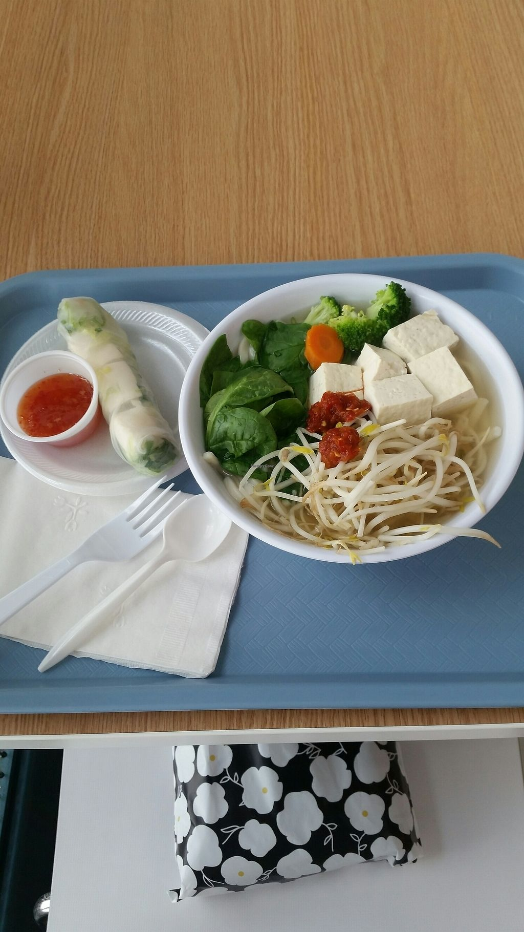 """Photo of Souper Bowl  by <a href=""""/members/profile/Christel79"""">Christel79</a> <br/>veggie noodle soup and a tofu spring roll <br/> July 28, 2017  - <a href='/contact/abuse/image/16052/285719'>Report</a>"""