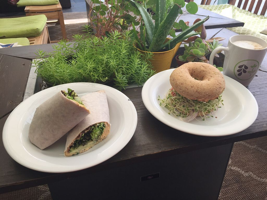 "Photo of Date & Thyme - Help Yourself  by <a href=""/members/profile/akweaver79"">akweaver79</a> <br/>Hummus wrap and Breakfast Bagel hold the egg! <br/> May 21, 2018  - <a href='/contact/abuse/image/16088/402957'>Report</a>"