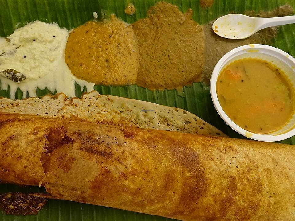 """Photo of Murugan Idli Shop  by <a href=""""/members/profile/JimmySeah"""">JimmySeah</a> <br/>Ghee Podi Thosai <br/> October 12, 2017  - <a href='/contact/abuse/image/16090/314511'>Report</a>"""