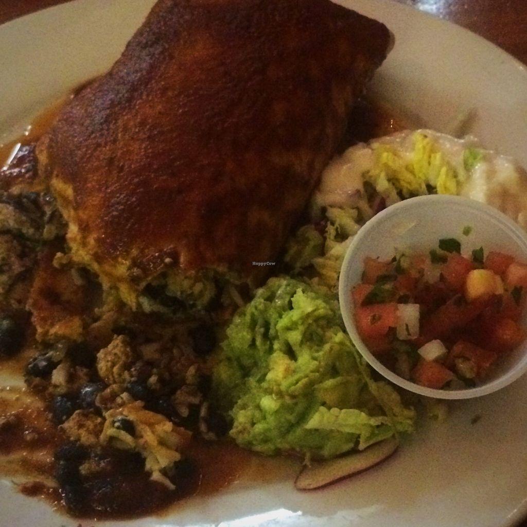 "Photo of Follow Your Heart Restaurant and Market  by <a href=""/members/profile/serrarose"">serrarose</a> <br/>Zorro Burrito - big enough for a super hero! <br/> December 27, 2015  - <a href='/contact/abuse/image/1609/130046'>Report</a>"