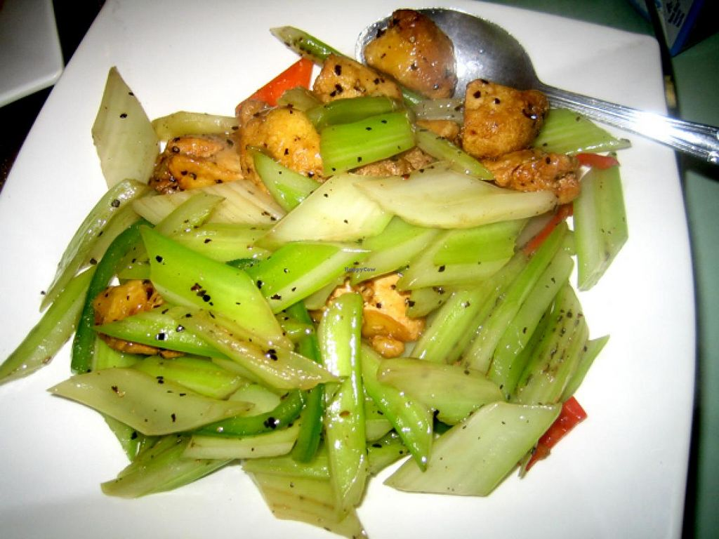 """Photo of Golden Vegetarian Food  by <a href=""""/members/profile/Stevie"""">Stevie</a> <br/>4 <br/> May 28, 2015  - <a href='/contact/abuse/image/16145/103777'>Report</a>"""