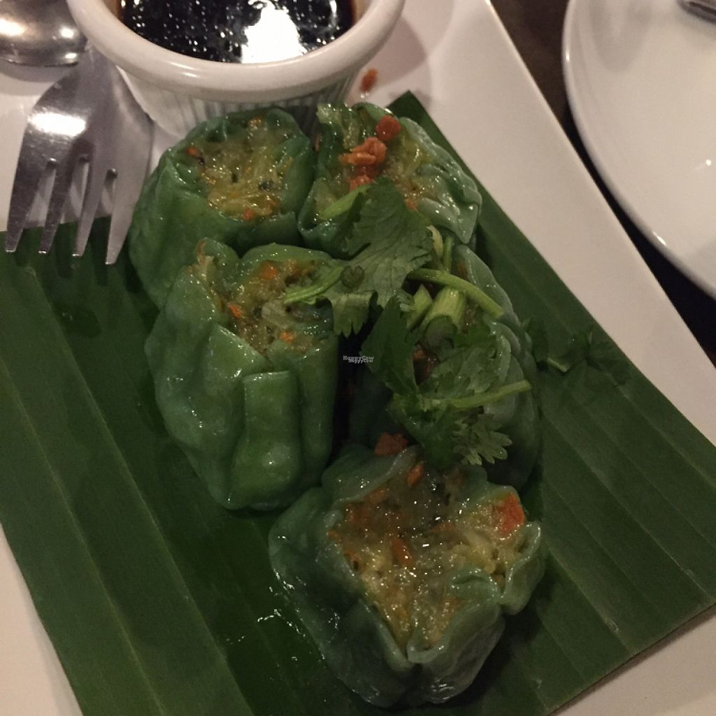 """Photo of Best Thai Addison  by <a href=""""/members/profile/LinnDaugherty"""">LinnDaugherty</a> <br/>veggie steamed dumplings <br/> January 8, 2017  - <a href='/contact/abuse/image/16277/209377'>Report</a>"""