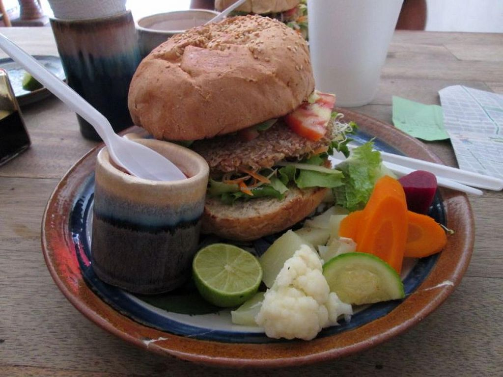 "Photo of CLOSED: Restaurante Vegetariano  by <a href=""/members/profile/choogirl"">choogirl</a> <br/>Vegan burger <br/> January 14, 2014  - <a href='/contact/abuse/image/16394/62470'>Report</a>"