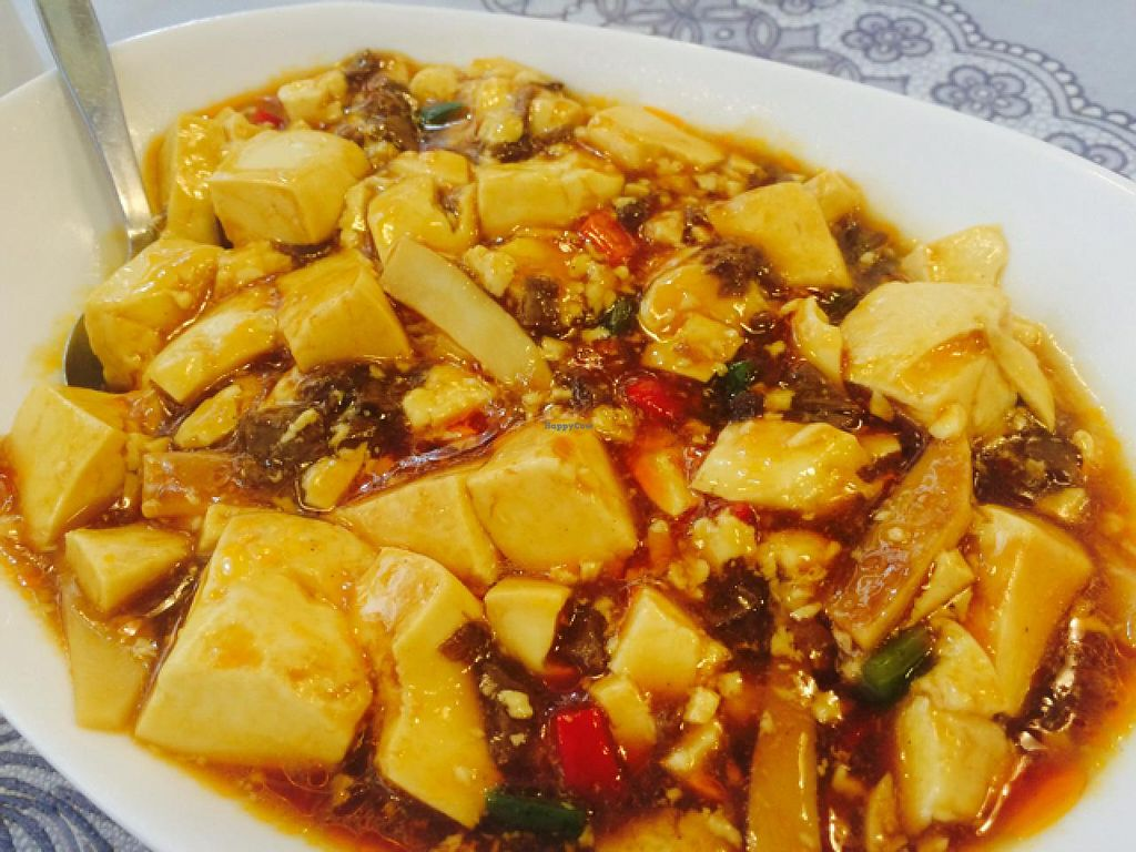 """Photo of Harmony Village Vegetarian  by <a href=""""/members/profile/drunkentiger"""">drunkentiger</a> <br/>mapo tofu <br/> June 26, 2015  - <a href='/contact/abuse/image/16455/107423'>Report</a>"""