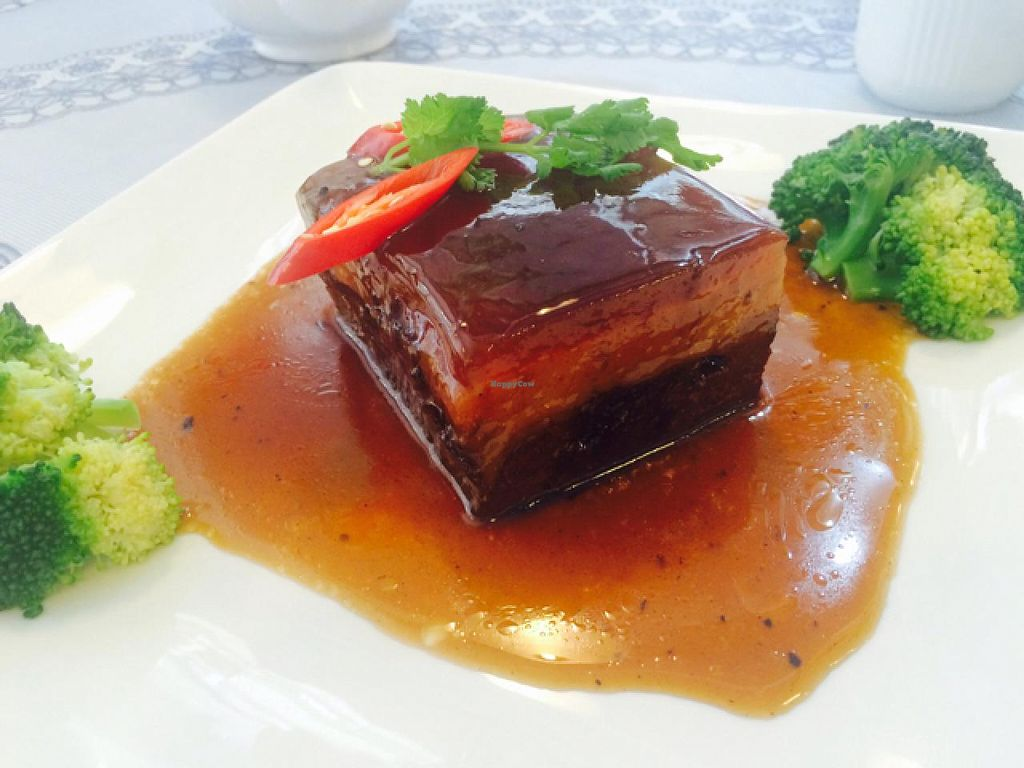 """Photo of Harmony Village Vegetarian  by <a href=""""/members/profile/drunkentiger"""">drunkentiger</a> <br/>pork <br/> June 26, 2015  - <a href='/contact/abuse/image/16455/107426'>Report</a>"""