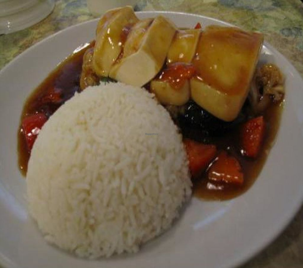 """Photo of Harmony Village Vegetarian  by <a href=""""/members/profile/Jibby"""">Jibby</a> <br/> December 3, 2011  - <a href='/contact/abuse/image/16455/196383'>Report</a>"""