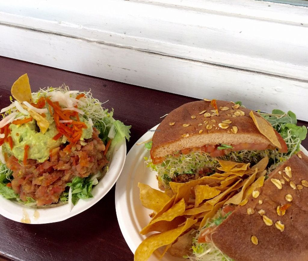 """Photo of The Stand  by <a href=""""/members/profile/arohskothen"""">arohskothen</a> <br/>taco bowl & garden burger <br/> January 9, 2016  - <a href='/contact/abuse/image/1645/131691'>Report</a>"""
