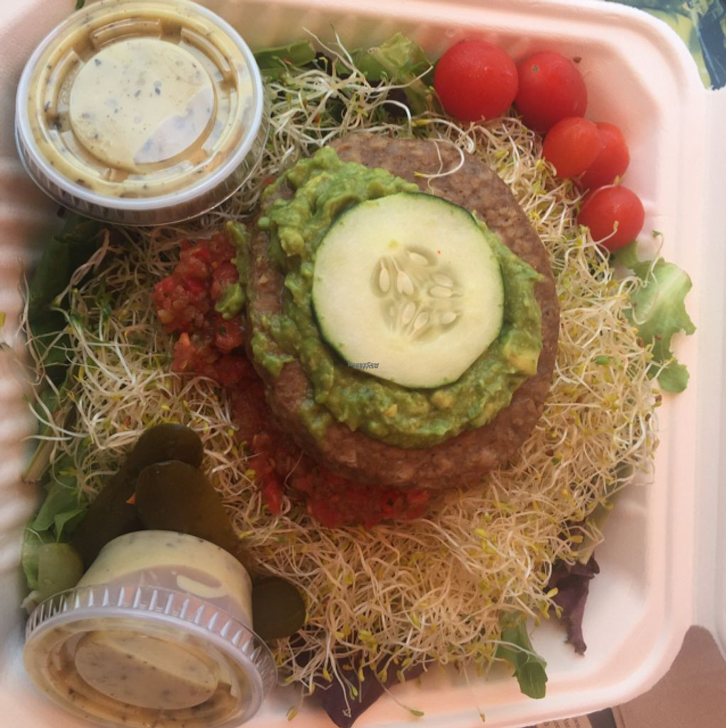 """Photo of The Stand  by <a href=""""/members/profile/Tguerena"""">Tguerena</a> <br/>veggie burger on salad <br/> August 5, 2016  - <a href='/contact/abuse/image/1645/165990'>Report</a>"""