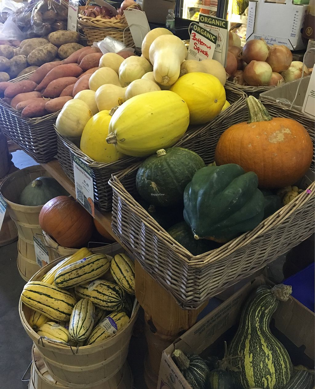 """Photo of Blue Water Natural Foods  by <a href=""""/members/profile/MaryAnneRohrdanz"""">MaryAnneRohrdanz</a> <br/>Some of the produce (fall season) <br/> November 22, 2017  - <a href='/contact/abuse/image/16506/327977'>Report</a>"""