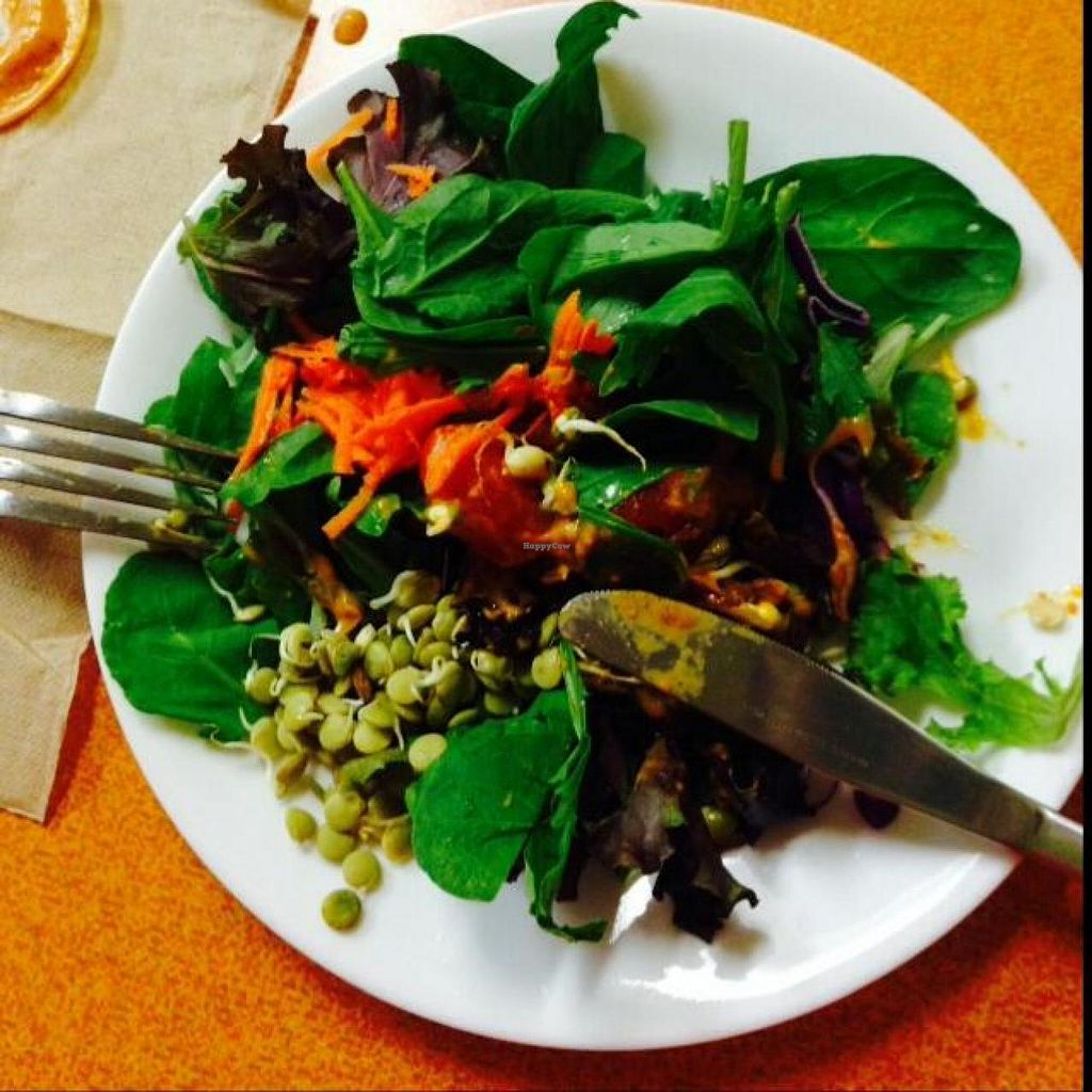 """Photo of Green Wave Cafe  by <a href=""""/members/profile/cinammonlock"""">cinammonlock</a> <br/>salad <br/> November 28, 2014  - <a href='/contact/abuse/image/16595/86684'>Report</a>"""