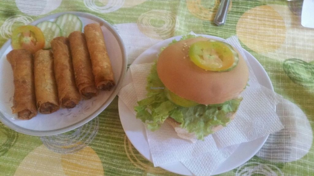 """Photo of Namaskar Vegetarian Restaurant  by <a href=""""/members/profile/Twism87"""">Twism87</a> <br/>veggie burger, spring rolls <br/> December 9, 2015  - <a href='/contact/abuse/image/16638/127762'>Report</a>"""