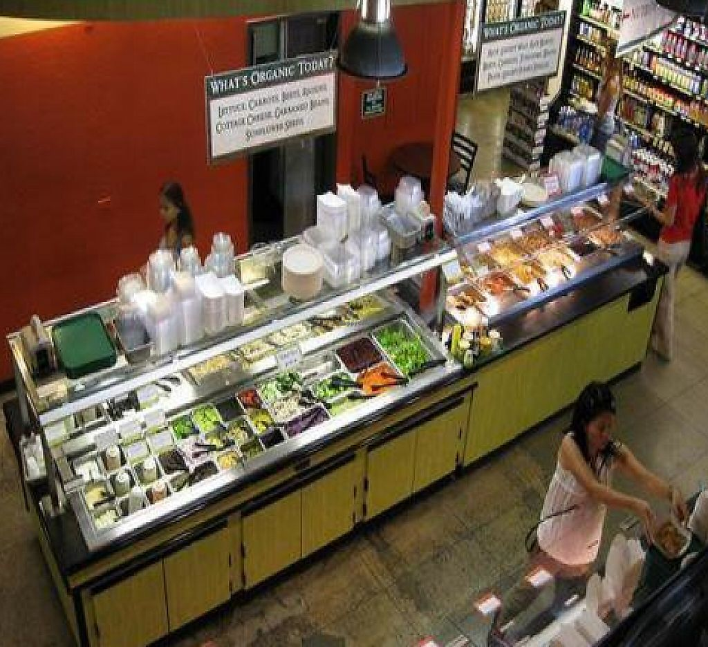 """Photo of Down to Earth Organic & Natural  by <a href=""""/members/profile/cvxmelody"""">cvxmelody</a> <br/>View of salad bar & buffet <br/> December 23, 2009  - <a href='/contact/abuse/image/16644/199319'>Report</a>"""