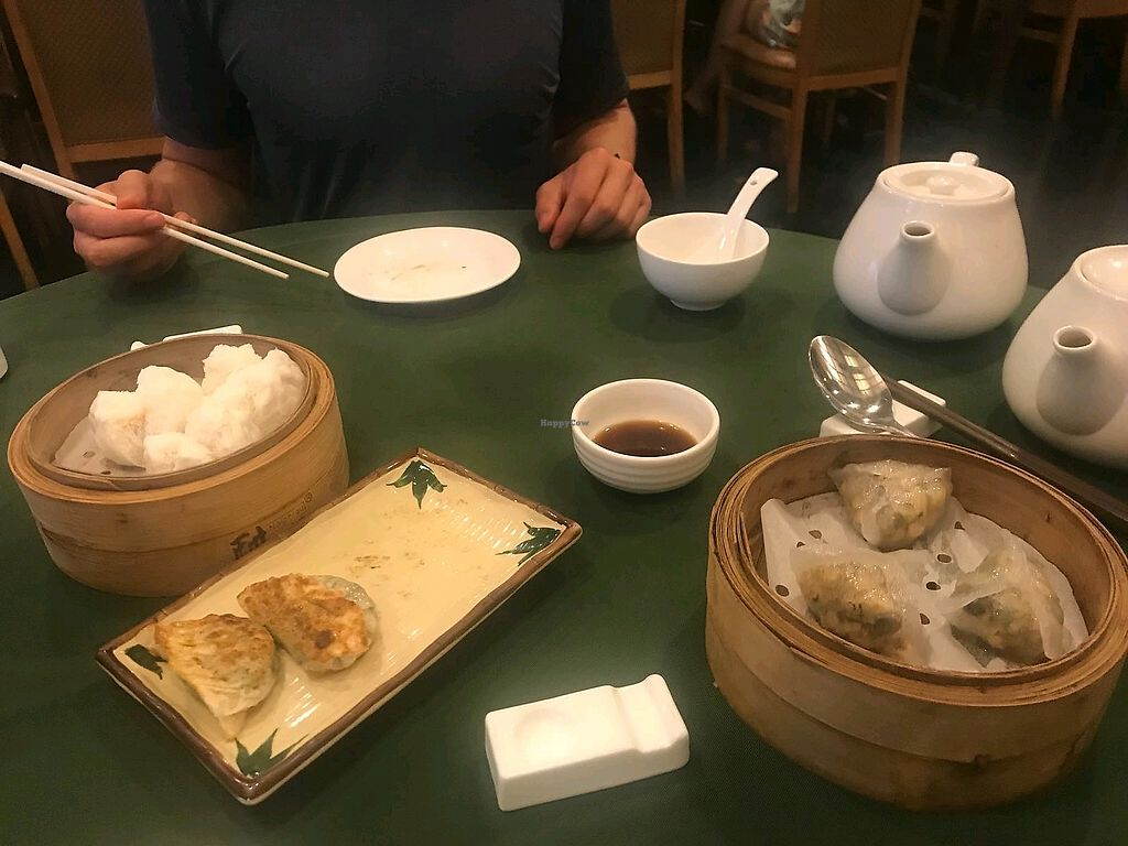 """Photo of Pure Veggie House  by <a href=""""/members/profile/JC1"""">JC1</a> <br/>Delicious dumplings!  <br/> May 19, 2018  - <a href='/contact/abuse/image/16829/401853'>Report</a>"""