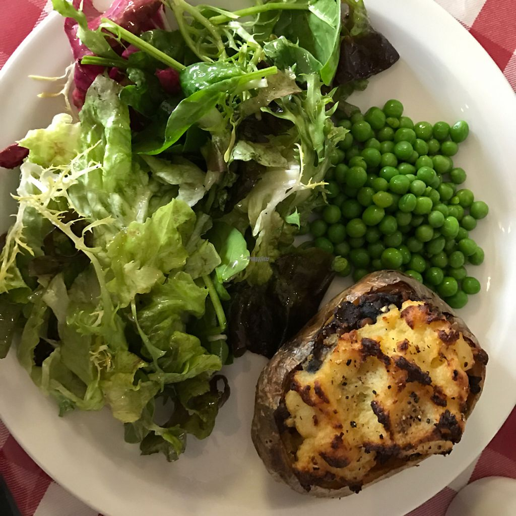 """Photo of The Ragged Canteen  by <a href=""""/members/profile/The%20London%20Vegan"""">The London Vegan</a> <br/>Shepard's pie style baked potato! <br/> March 31, 2017  - <a href='/contact/abuse/image/16842/242955'>Report</a>"""