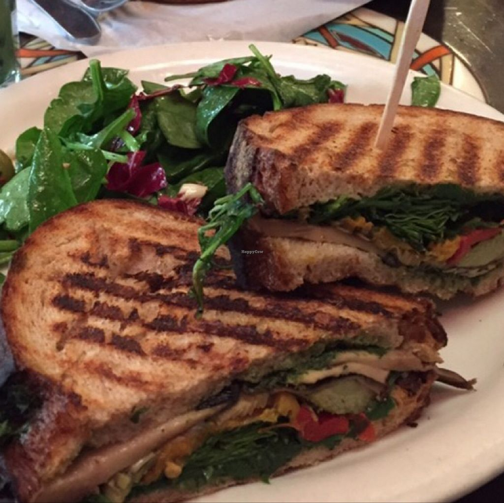 """Photo of Urth Caffe  by <a href=""""/members/profile/arohskothen"""">arohskothen</a> <br/>portobello mushroom sandwich  <br/> January 9, 2016  - <a href='/contact/abuse/image/16851/131686'>Report</a>"""