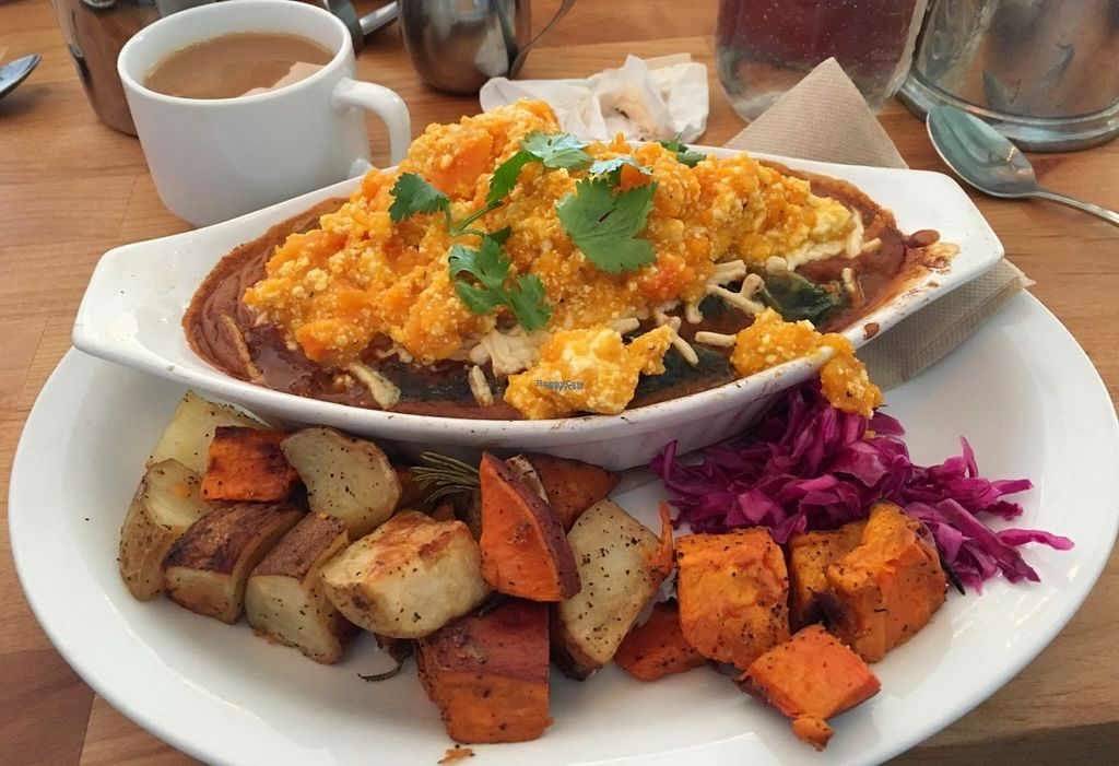 """Photo of Bandidas Taqueria  by <a href=""""/members/profile/vegan%20frog"""">vegan frog</a> <br/>Vegan Lemmy <br/> October 30, 2016  - <a href='/contact/abuse/image/16939/185434'>Report</a>"""