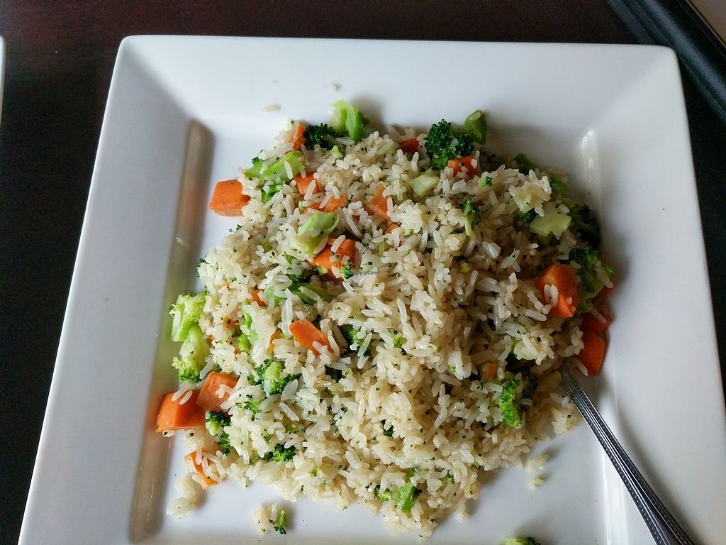 Photo of Marco Polo Global Restaurant  by J3551684 <br/>Veggie fried rice (no egg!) <br/> August 10, 2017  - <a href='/contact/abuse/image/17030/291315'>Report</a>