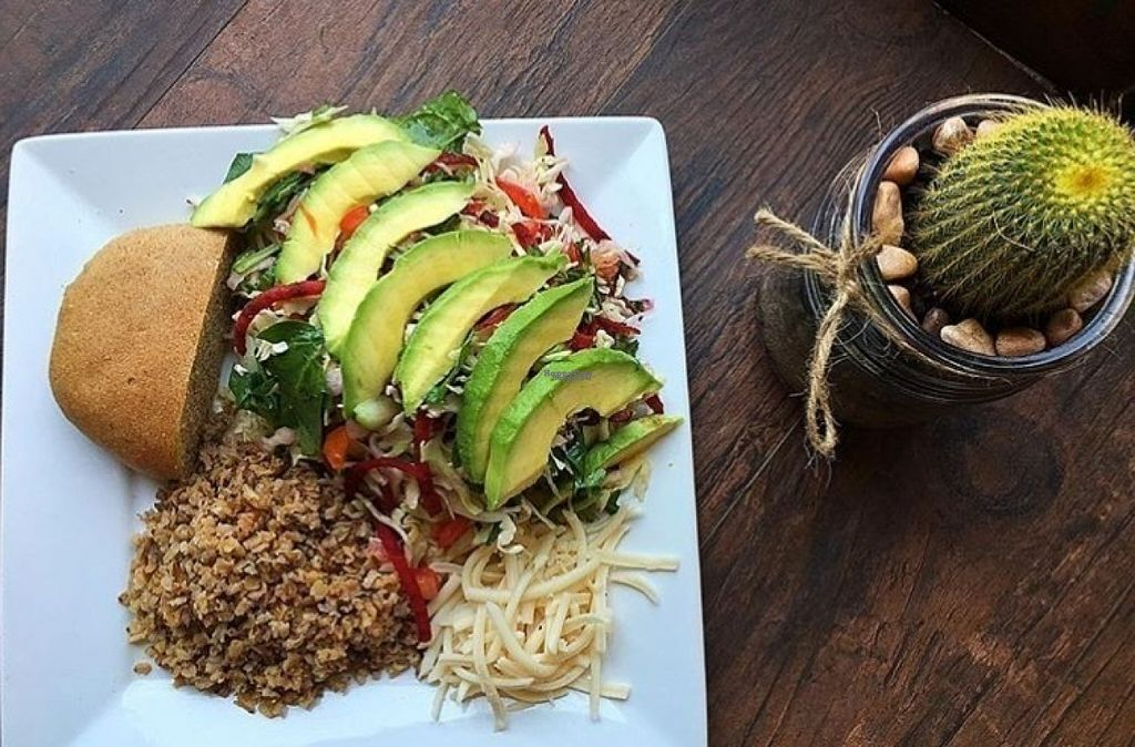 """Photo of Leonor's Mexican Vegetarian Restaurant  by <a href=""""/members/profile/Leonorsstudiocity762"""">Leonorsstudiocity762</a> <br/>Avacado Salad  <br/> August 11, 2016  - <a href='/contact/abuse/image/1714/167688'>Report</a>"""