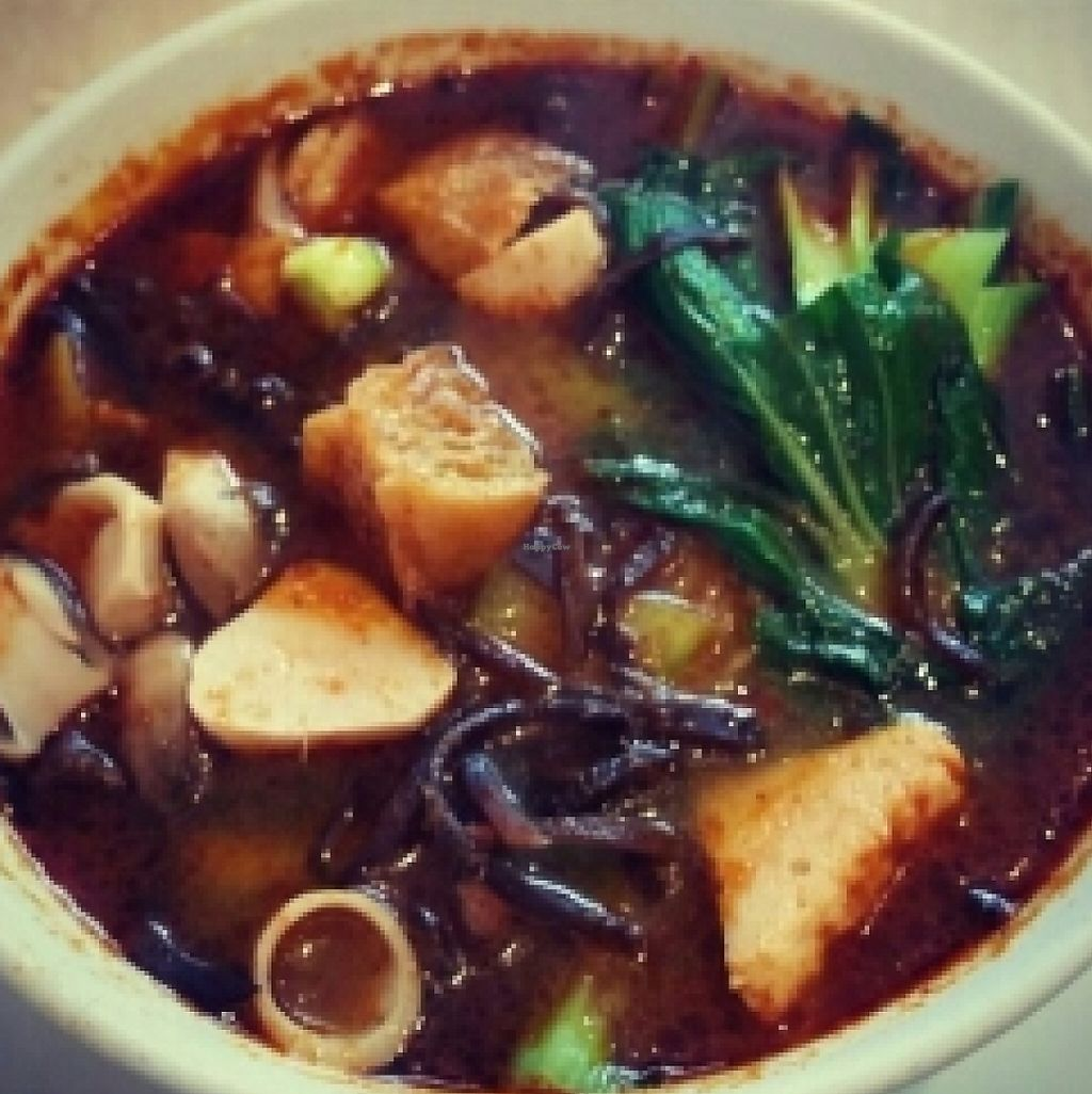 """Photo of Tea Master  by <a href=""""/members/profile/charmagama"""">charmagama</a> <br/>Vegan Tom Yum Noodle Soup  <br/> February 21, 2016  - <a href='/contact/abuse/image/17221/251844'>Report</a>"""
