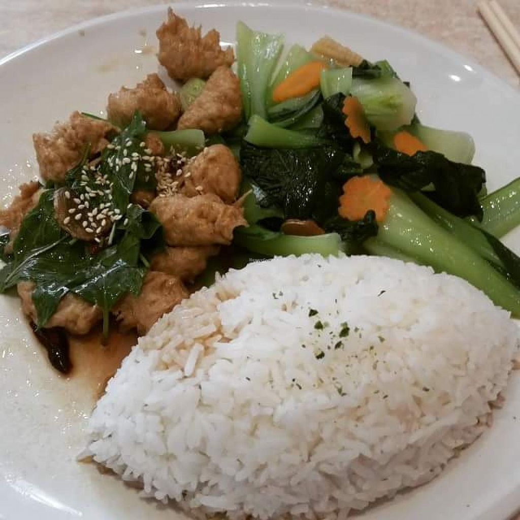 """Photo of Tea Master  by <a href=""""/members/profile/charmagama"""">charmagama</a> <br/>chicken style soy stir-fry with vegetables and rice. yummo!  <br/> April 20, 2015  - <a href='/contact/abuse/image/17221/99733'>Report</a>"""