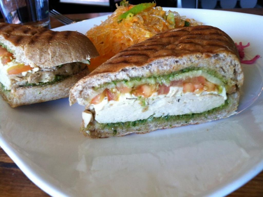 "Photo of Golden Mean Cafe  by <a href=""/members/profile/brandalock"">brandalock</a> <br/>Chicken pesto sandwich with kelp salad, side view <br/> June 26, 2014  - <a href='/contact/abuse/image/17298/72840'>Report</a>"