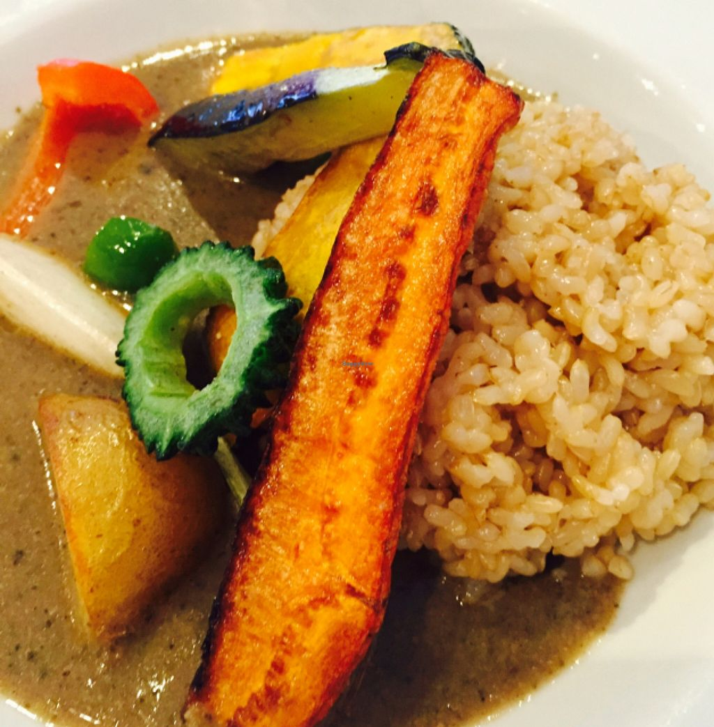"Photo of Hanada Rosso  by <a href=""/members/profile/JaqVeganWriter"">JaqVeganWriter</a> <br/>Vegetable Curry <br/> September 26, 2015  - <a href='/contact/abuse/image/17300/119154'>Report</a>"