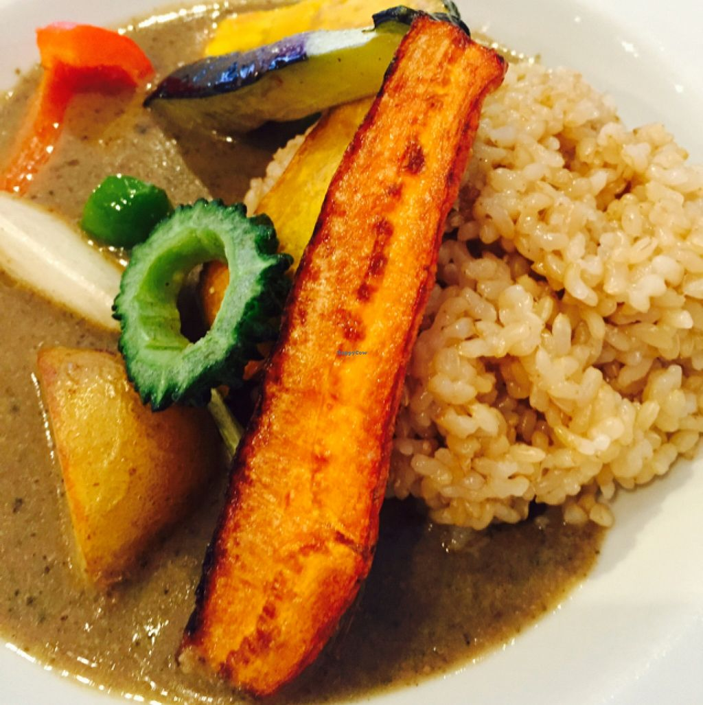 "Photo of Hanada Rosso  by <a href=""/members/profile/JaqVeganWriter"">JaqVeganWriter</a> <br/>Vegetable Curry <br/> September 26, 2015  - <a href='/contact/abuse/image/17300/119159'>Report</a>"