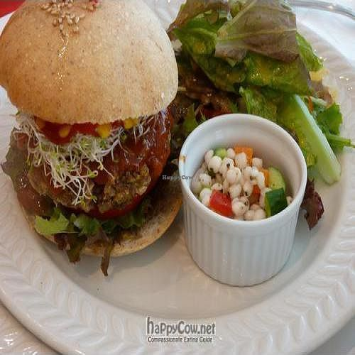 "Photo of Hanada Rosso  by <a href=""/members/profile/Nihacc"">Nihacc</a> <br/>Gohongi vegetable hamburguer with salad <br/> September 5, 2010  - <a href='/contact/abuse/image/17300/5693'>Report</a>"