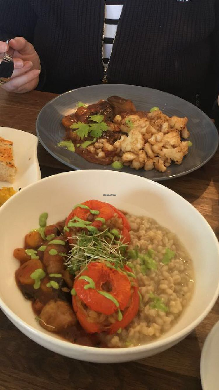 """Photo of LeichtSinn Vitalbistro  by <a href=""""/members/profile/RachelJenkins"""">RachelJenkins</a> <br/>Both vegan dishes of the day (pearl barley stuffed tomatoes with ragout and panfried crumbed cauliflower with ragout) <br/> January 26, 2018  - <a href='/contact/abuse/image/17354/351268'>Report</a>"""