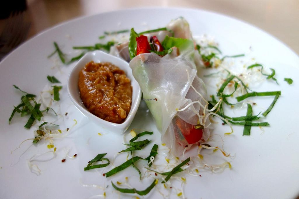 """Photo of CLOSED: De Eetstee  by <a href=""""/members/profile/Gudrun"""">Gudrun</a> <br/>starter: spring rolls <br/> September 3, 2014  - <a href='/contact/abuse/image/17519/78889'>Report</a>"""