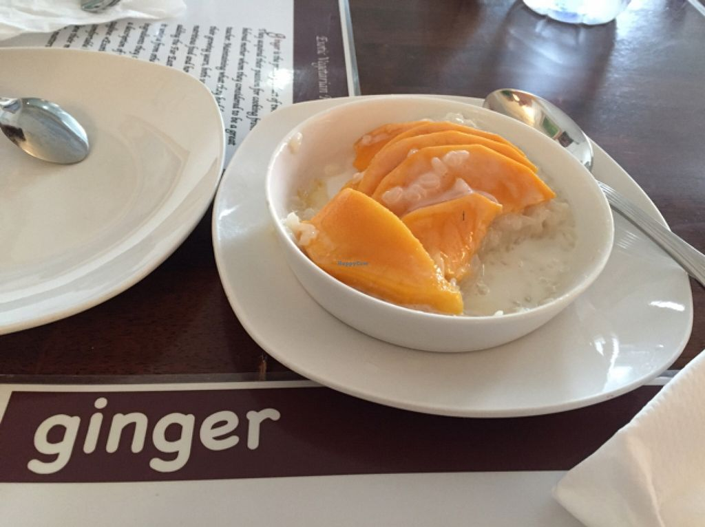"""Photo of Ginger Restaurant  by <a href=""""/members/profile/magnus169"""">magnus169</a> <br/>dessert mango sticky rice  <br/> October 21, 2015  - <a href='/contact/abuse/image/17673/122033'>Report</a>"""