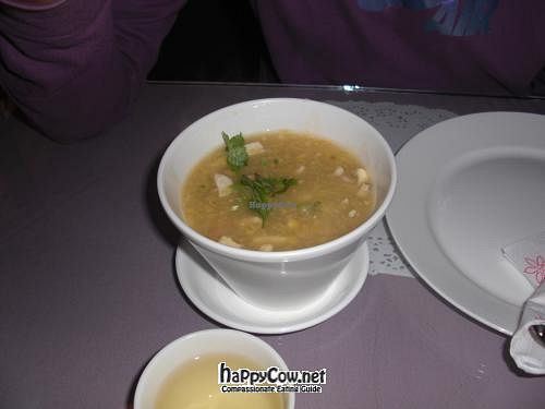"Photo of Vina Vegan  by <a href=""/members/profile/eco88"">eco88</a> <br/>From what I recall this was a corn and tofu soup.  <br/> March 10, 2012  - <a href='/contact/abuse/image/17714/29256'>Report</a>"