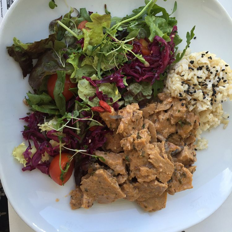 """Photo of Miss Saigon  by <a href=""""/members/profile/DonnaC"""">DonnaC</a> <br/>seitan and mushroom stroganoff  <br/> September 12, 2016  - <a href='/contact/abuse/image/17785/175252'>Report</a>"""