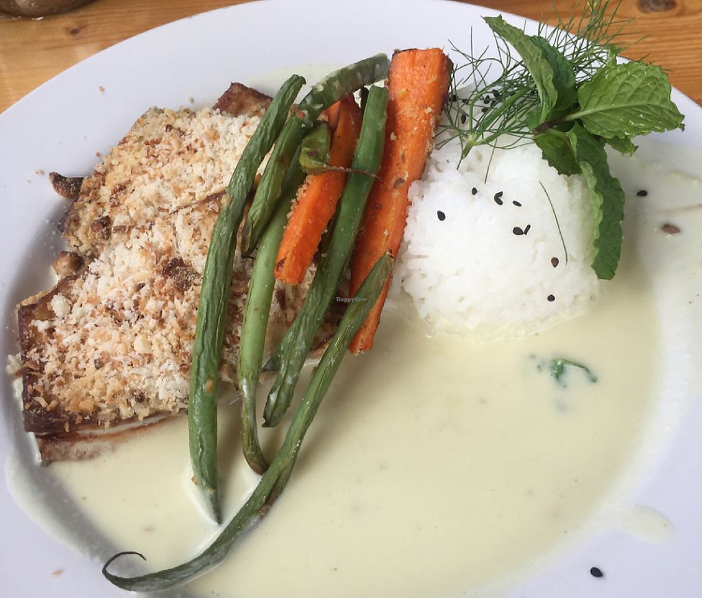 "Photo of Eat Healthy Kauai  by <a href=""/members/profile/merimac"">merimac</a> <br/>coconut mac tofu <br/> June 18, 2016  - <a href='/contact/abuse/image/17833/199452'>Report</a>"