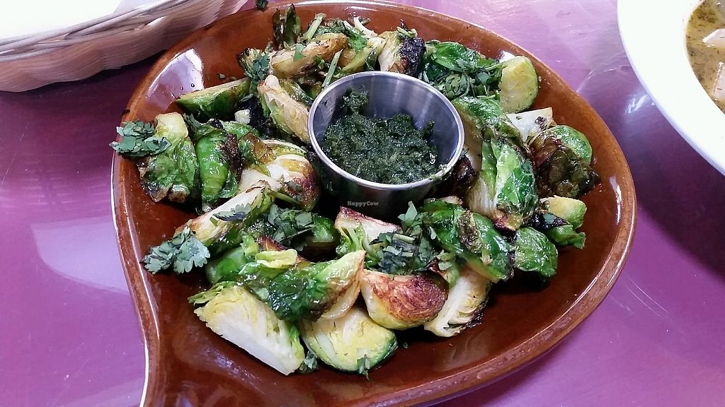 "Photo of El Gamal  by <a href=""/members/profile/bduboff"">bduboff</a> <br/>roasted brussel sprouts <br/> March 24, 2018  - <a href='/contact/abuse/image/17848/375531'>Report</a>"
