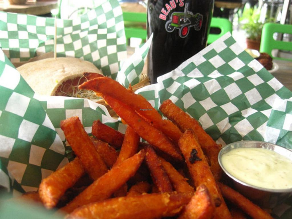 """Photo of Panthere Verte - Mile End  by <a href=""""/members/profile/Babette"""">Babette</a> <br/>Organic beer on tap, sweet potatoe fries with chipotle mayo and a sandwich <br/> July 24, 2015  - <a href='/contact/abuse/image/18035/110760'>Report</a>"""