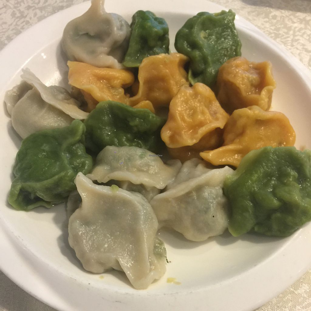 """Photo of Bowei Tang  by <a href=""""/members/profile/howardxp1"""">howardxp1</a> <br/>cabbage, fennel & Celery Dumplings <br/> July 8, 2016  - <a href='/contact/abuse/image/18167/158404'>Report</a>"""