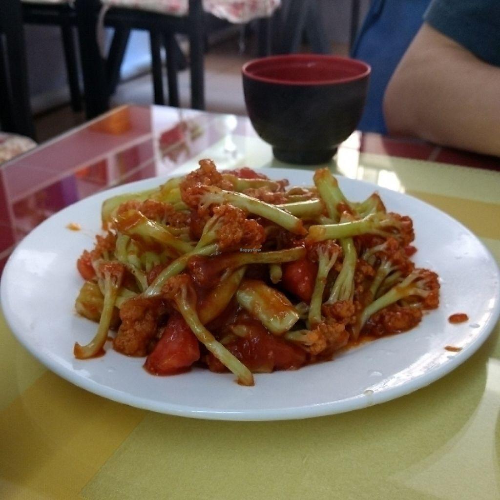 "Photo of Tian Yuan Restaurant  by <a href=""/members/profile/CaptanaBanana"">CaptanaBanana</a> <br/>Nr 111 - 20 yuan <br/> May 17, 2017  - <a href='/contact/abuse/image/18320/259423'>Report</a>"