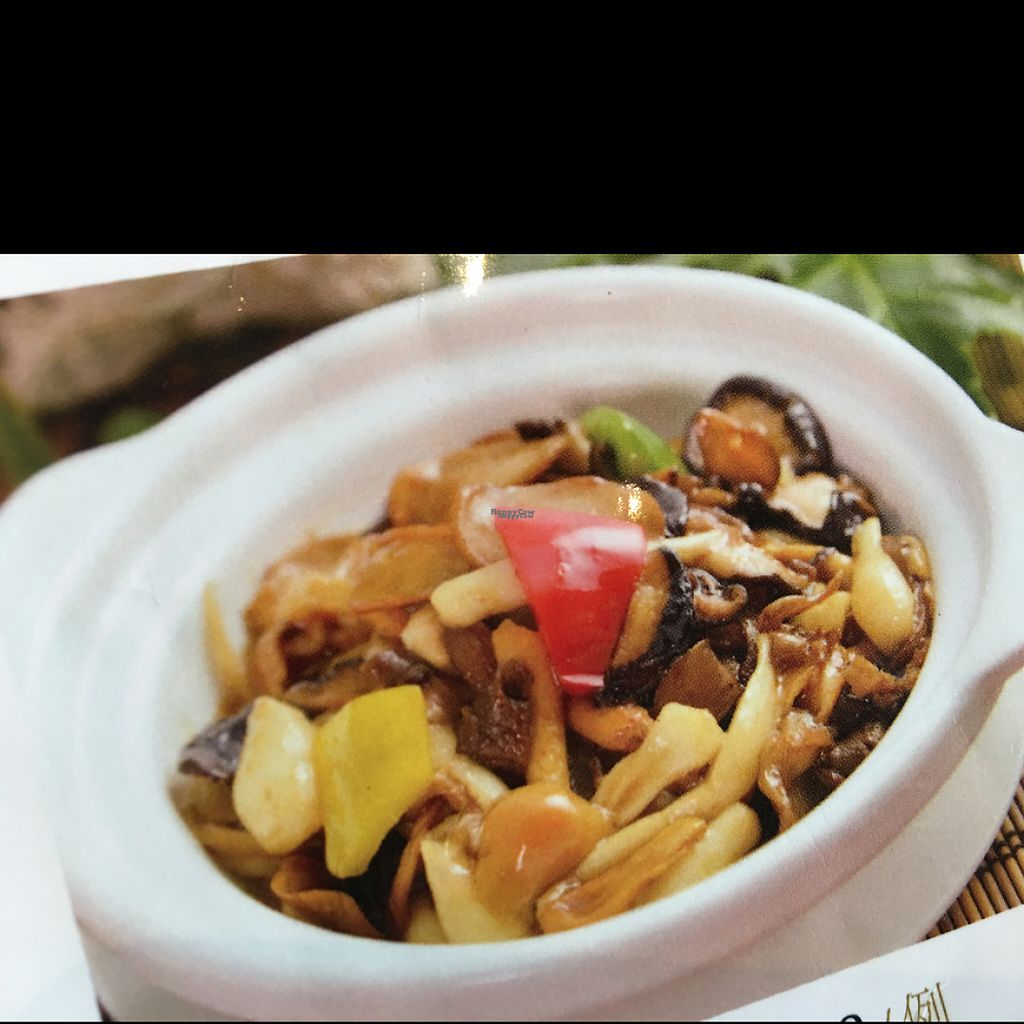 """Photo of Shan Ding Dong Ren - Caveman Vegetarian Teahouse  by <a href=""""/members/profile/ScottieT37"""">ScottieT37</a> <br/>stewed assorted mushrooms <br/> March 4, 2017  - <a href='/contact/abuse/image/18363/232411'>Report</a>"""