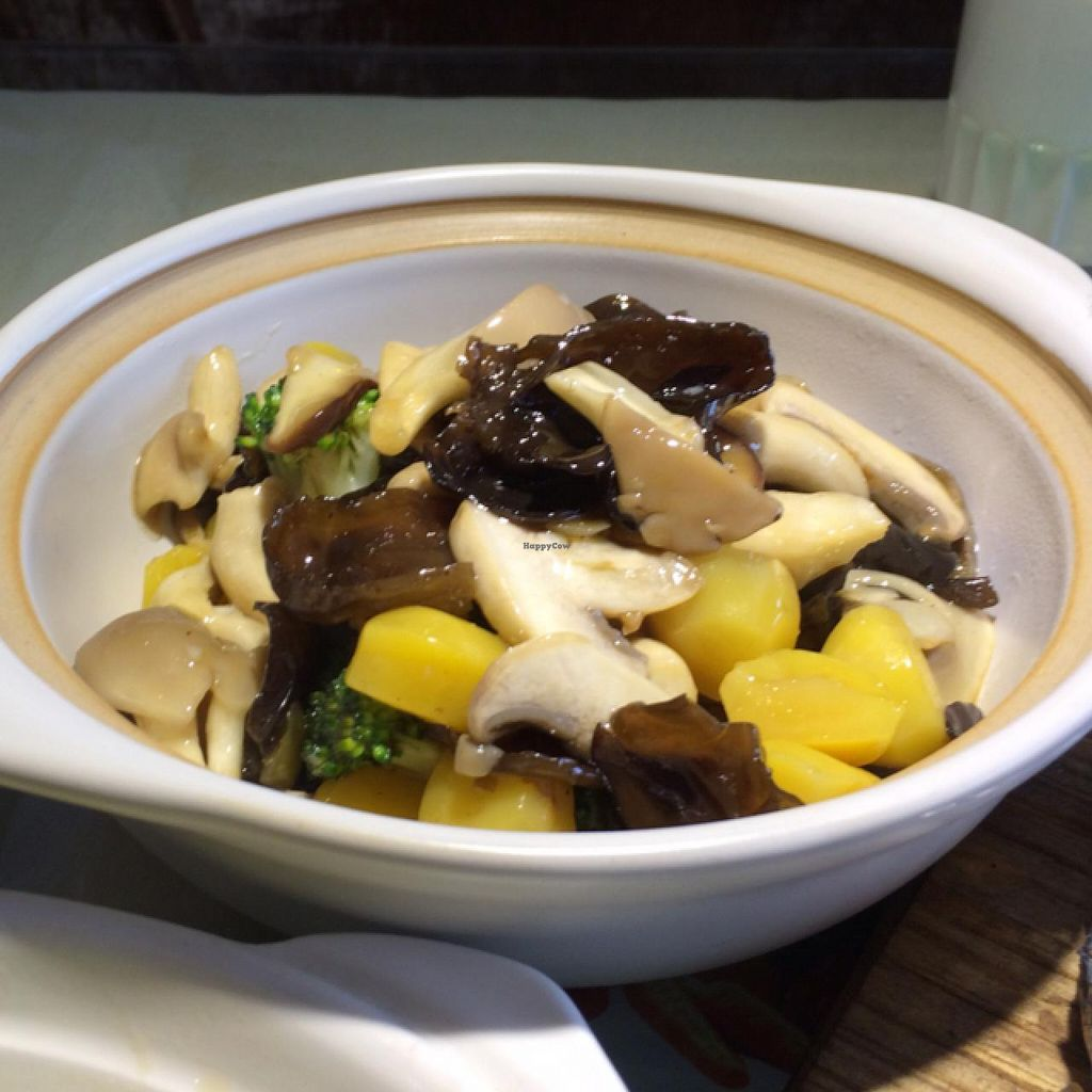 """Photo of Shou Kang Yong Vegetarian  by <a href=""""/members/profile/lennartschelter"""">lennartschelter</a> <br/>Mixed mushrooms with potatoe, 32 Yuan <br/> January 31, 2015  - <a href='/contact/abuse/image/18402/91825'>Report</a>"""