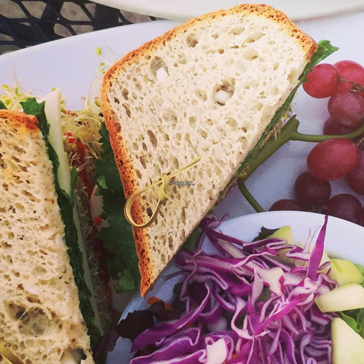 """Photo of Natural Sister Cafe  by <a href=""""/members/profile/Eefie"""">Eefie</a> <br/>Glutenfree avocado & veggie sandwich with vegan cheese and roasted peppers <br/> October 17, 2016  - <a href='/contact/abuse/image/18427/182580'>Report</a>"""